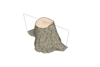 stump-measure3